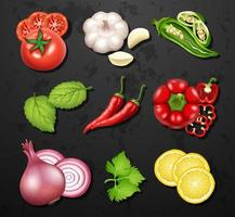 Set di verdure ed erbe vettore