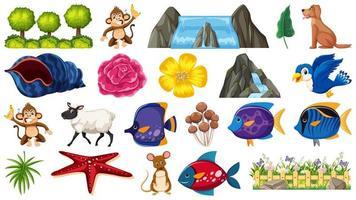 Set di piante e animali