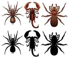 Set di diversi bug vettore