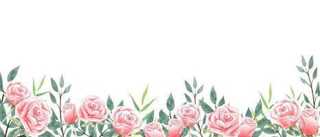Carta da parati del giardino di rose su fondo bianco. vettore