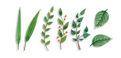 Insieme di foglie selvatiche nella pittura ad acquerello vettore