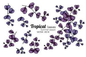 set di foglie tropicali viola vettore