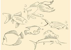 Vettori di pesci disegnati a mano