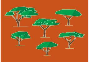 Vettori dell'albero dell'acacia