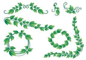 Vettori adorabili della vite di edera