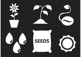 Icone bianche di vettore della pianta e del seme