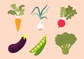 Raccolta di verdure vettoriale