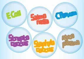vettore nomi di batteri piatti di Petri