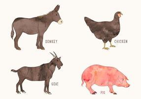 Animali da fattoria dell'acquerello di vettore gratis