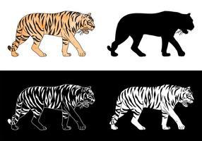 insieme di vettore della siluetta della tigre