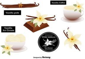 Vettori di fiori di vaniglia impostati