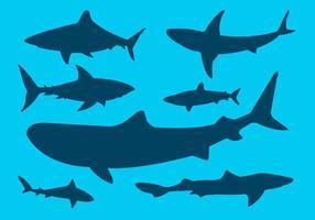 Insieme vettoriale di sagome di squalo