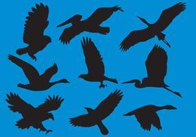 Wildfowl e grandi uccelli Silhouette vettori