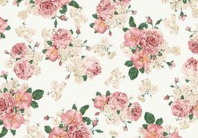 Fondo di vettore delle rose rosa e bianche d'annata