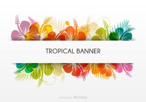 Banner vettoriale tropicale