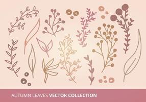 Collezione di foglie d'autunno vettoriale