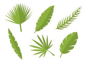 Vettori di foglie