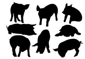 Pig Silhouette vettoriali gratis