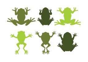 Vettori di rana verde dell'albero