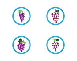 modello di logo uva cerchio vettore
