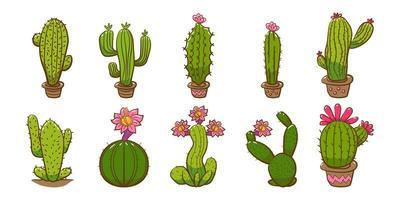 collezione di piante di cactus vettore