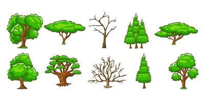 set albero verde