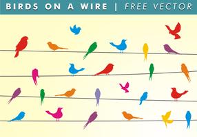 Uccelli su un filo vettoriali gratis