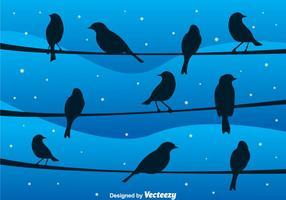 Uccello su un cavo al vettore di notte