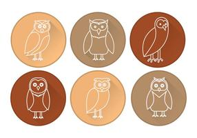 Barn Owl Icon Vector
