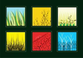 Vari vettori di erba e cespugli