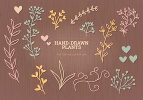 Vector elementi disegnati a mano
