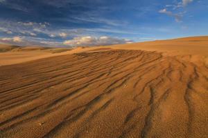 prachtig uitzicht op de Gobi-woestijn. Mongolië.